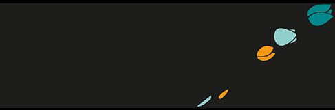 logo-saray